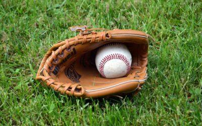 For Alex Avila, Baseball Is the Family Business