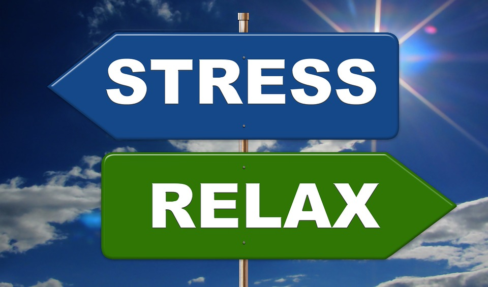 Poll of the Day: Stress Relievers